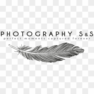 Photography Logo Png Transparent Best Photography Logo Png Png Download 649x649 18342 Pngfind