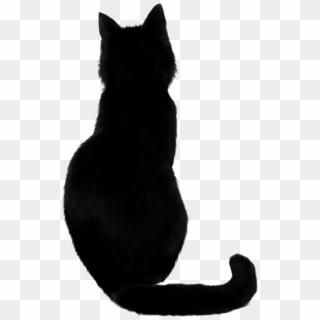 Black Cat Png Photos Chat Noir Dessin Facile Transparent Png 643x1024 1360519 Pngfind