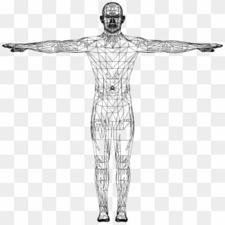 Human PNG Transparent For Free Download - PngFind