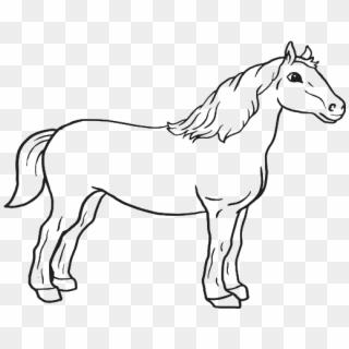 Gambar Kuda Png Kuda Png Transparent Png 886x720 1617729 Pngfind