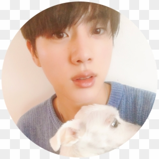 351 3517619 jin bts tumblr kim seokjin dog hd png