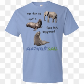 Funny Elephant Seals T Shirt Hd Png Download 1155x1155 3897747 Pngfind Elephant seal png cliparts, all these png images has no background, free & unlimited downloads. funny elephant seals t shirt hd png