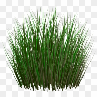 Grass PNG Transparent For Free Download - PngFind