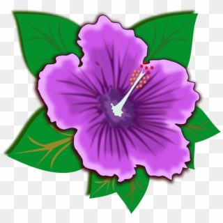 Download Free Printable Clipart And Coloring Pages Purple Hibiscus Flower Png Transparent Png 765x720 417465 Pngfind