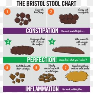 Dog Poop Normal - Cake Bristol Stool Chart, HD Png Download