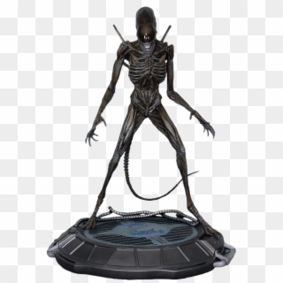 Xenomorph PNG Transparent For Free Download - PngFind