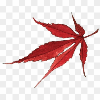 Brown Maple Leaf Autumn Leaf Clipart Png Transparent Png 3000x3000 641143 Pngfind